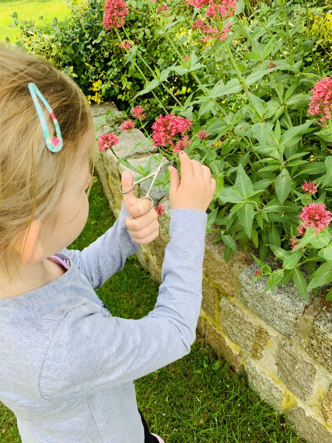 Mädchen schneidet Blüten ab